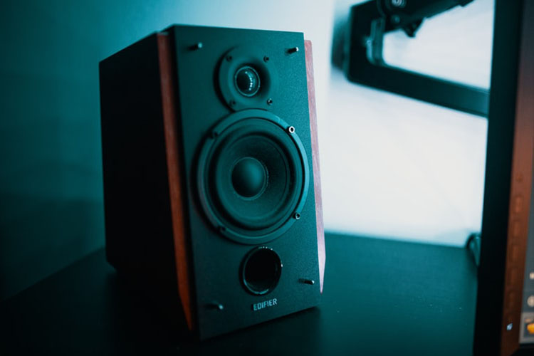 Top 10 Best Subwoofer Speaker in 2020